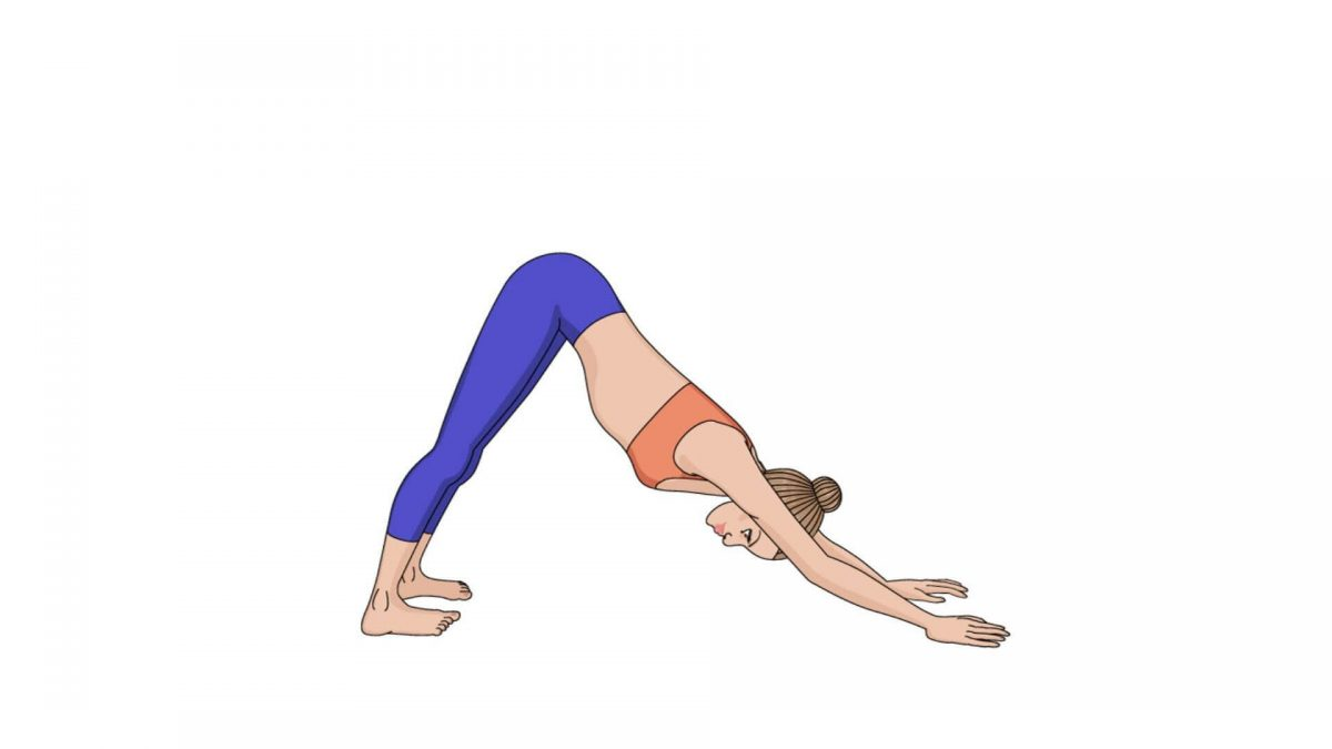 Downward-Facing Dog (Adho Much Svanasana)